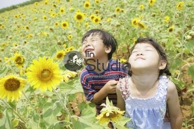 Portrait of happy sunflower children