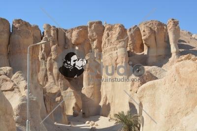 Al Ahsa Oasis, Saudi Arabia Tourism