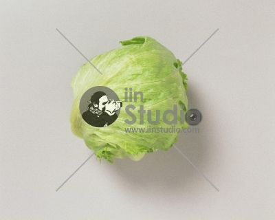 Younr Iceberg salad isolated