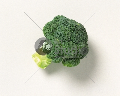 Green Broccoli Piece