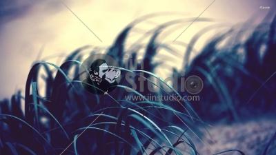 3693-grass-1920x1080-artistic-wallpaper