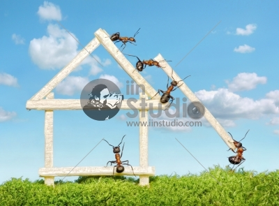 Team of ants constructing wooden house with matches