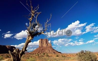 fond-ecran-nature-paysages-deserts-094