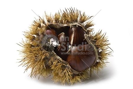 Some fresh chestnuts