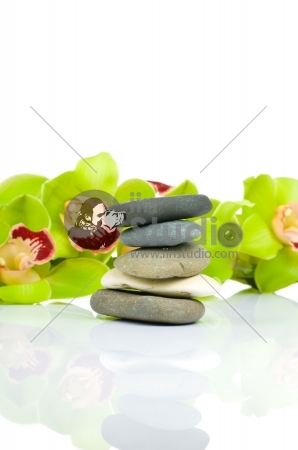 Beautiful Orchid and spa stone isolated on white backgroud