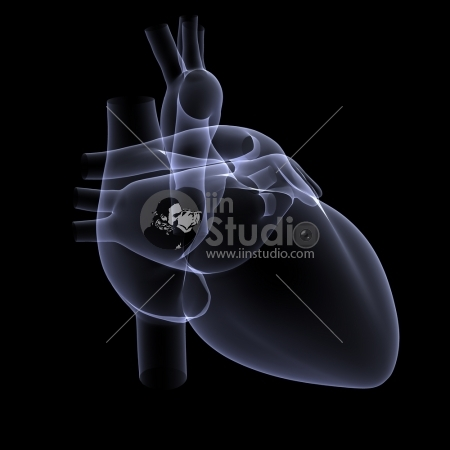 X-ray of a Human heart - 3D rendered