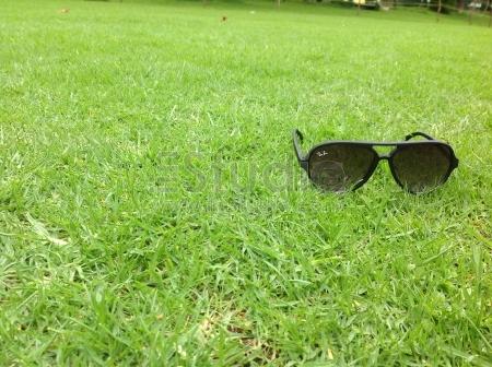 Eyeglass in green grass park